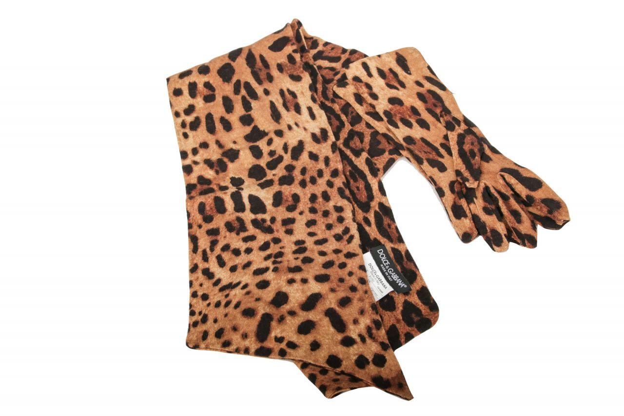 Dolce & Gabbana Schal & Handschuhe Leopard